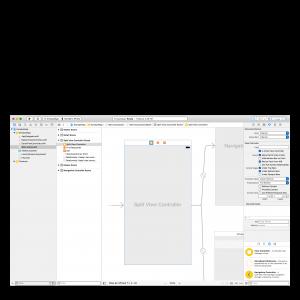 Apple Enterprise Developer License for iOS